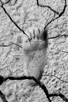 Footprint In Mud Stock Images