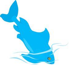 Free Blue Fish Stock Photography - 3557172