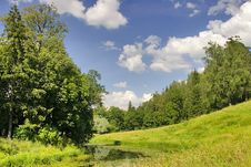 Free Pond In Summer Forest Stock Photos - 3559393