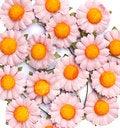 Free Handicraft Paper Flower Stock Image - 35502631