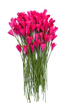 Free Handicraft Paper Flower Royalty Free Stock Photos - 35502548