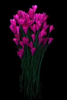 Free Handicraft Paper Flower Stock Photo - 35502560