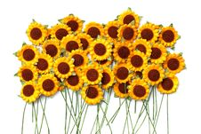 Free Handicraft Paper Flower Stock Image - 35502681