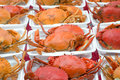 Free Steamed Crabs Stock Photo - 35513500