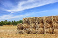 Free Mown Hay Harvested In Large Briquettes On The Field Royalty Free Stock Photos - 35525258