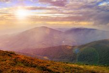Morning Light On Mountain Slope With Forest Stock Photo