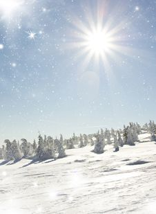 Free Christmas Background With Snowy Fir Trees Stock Photos - 35525393