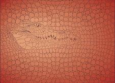 Free Pattern Background Crocodile Stock Photo - 35529170