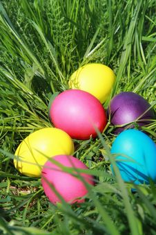 Free Easter Eggs On The Grass Stock Photos - 35534223