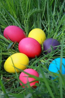 Free Easter Eggs On The Grass Royalty Free Stock Images - 35534229