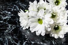 Free Bouquet Of Daisies Stock Photography - 35534752