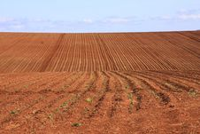Free Ploughed Field Red Soil Stock Photo - 35539660