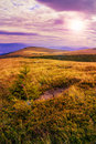Free Light On Stone Mountain Slope With Forest Royalty Free Stock Photo - 35540085