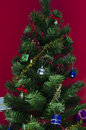 Free Christmas Tree On Red Royalty Free Stock Photo - 35544425