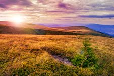 Free Light On Stone Mountain Slope With Forest Stock Image - 35540071