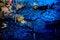 Free Kumistavi Cave &x28;Prometheus Cave&x29; Royalty Free Stock Images - 35547109