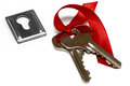 Free A Bunch Of Keys And Keyhole Royalty Free Stock Photography - 35564667