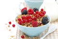 Free Delicious Granola In The Bowl With Fresh Berries And Jug Of Milk Royalty Free Stock Photo - 35573355