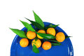 Free Mandarins On A Dark Blue Plate Royalty Free Stock Photo - 35577035