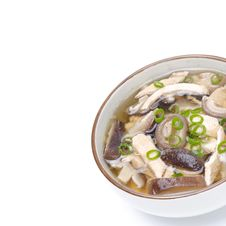 Chinese Soup With Chicken, Shiitake Mushrooms And Green Onions Royalty Free Stock Photos
