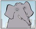 Free City Elephant Royalty Free Stock Photos - 35593788