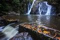 Free Rainforest Waterfall Stock Photos - 35599143