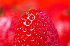 Free Detail Of Fresh Strawberry Stock Photo - 3561380