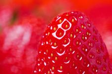 Free Detail Of Fresh Strawberry Stock Photo - 3561440