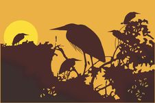 Free Crane Stock Images - 3566814