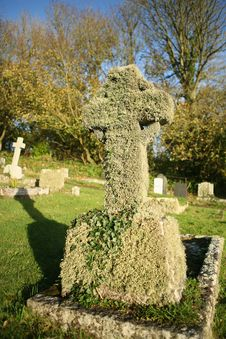Free Old Gravestone Covered In Ivy Royalty Free Stock Photos - 3567018
