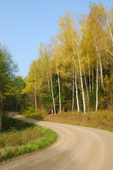 Free Road Among An Autumn Wood Stock Photo - 3568490