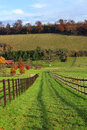Free An English Rural Landscape In Autumn Stock Images - 35603734