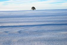 Beautiful Winter Landscape Royalty Free Stock Photos