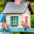 Free Bird Feeders. Tree House For The Birds, Royalty Free Stock Photos - 35619298