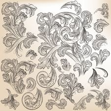 Collection Of Vector Floral Decorative Swirls For Design Stock Photography