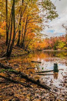 Free Autumn Season At A Lake Royalty Free Stock Photography - 35619507