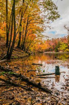 Autumn Season At A Lake Royalty Free Stock Photography