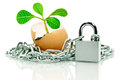 Free The Plant In The Egg Shell Apart,wound Chain And Padlock Royalty Free Stock Image - 35620036
