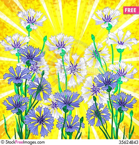 Free Vector Background With Blue Cornflowers Stock Photos - 35624843