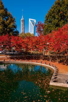 Charlotte City Skyline Autumn Season Stock Photo