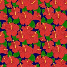 Free Vector Seamless Pattern With Hibiscus Stock Image - 35623611