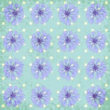 Free Vector Seamless Pattern With Cornflower Stock Photo - 35624820