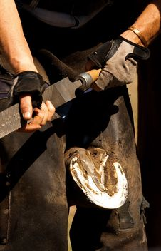 Free Farrier Filing Hoof Royalty Free Stock Photos - 35625018