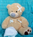 Free The Injured Bear Royalty Free Stock Image - 35635376