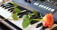 Free Rose On A Synthesizer Royalty Free Stock Photography - 35633277