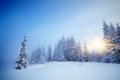 Free Fog In Winter Stock Photo - 35649940