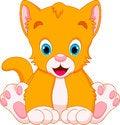 Free Cat Babies Cartoon Stock Photography - 35666092