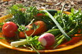 Free Plate Of Fresh Vegetables Royalty Free Stock Photography - 35676487