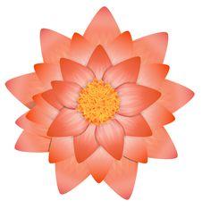 Free Flower Stock Photos - 35670153