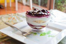 Fancy Blueberry Cake Royalty Free Stock Image